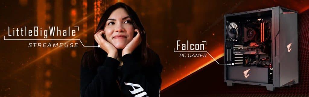 LittleBigWhale PC gamer Falcon